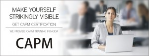 CAPM Certificaton Training