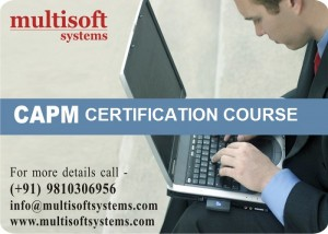 CAPM Training Course