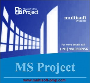 MS Project Training Program